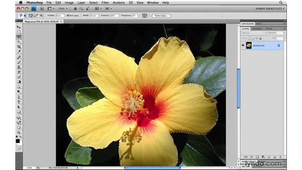 The Magnetic Lasso tool: Photoshop CS4 Power Shortcuts