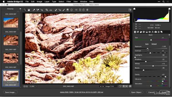 Advanced recovery with Camera Raw: Shooting and Processing Panoramas