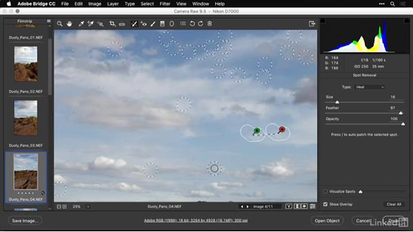 Removing dust with Camera Raw: Shooting and Processing Panoramas