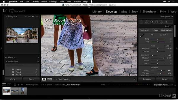 Developing the new Raw panorama image: Shooting and Processing Panoramas