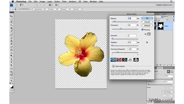 Refine Mask shortcuts: Photoshop CS4 Power Shortcuts