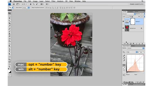 Cycling through channels for Curves and Levels: Photoshop CS4 Power Shortcuts