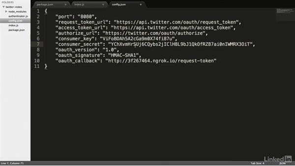 Creating an OAuth login request: RESTful Web API Design with Node.js