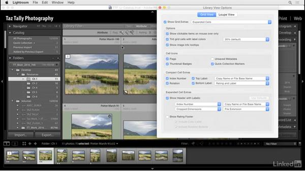 Customize the grid and loupe views: Lightroom: Customizing Tips and Techniques
