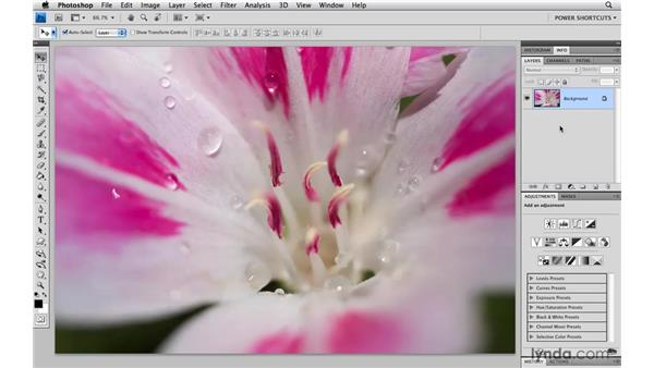 Reopening the last filter you used: Photoshop CS4 Power Shortcuts
