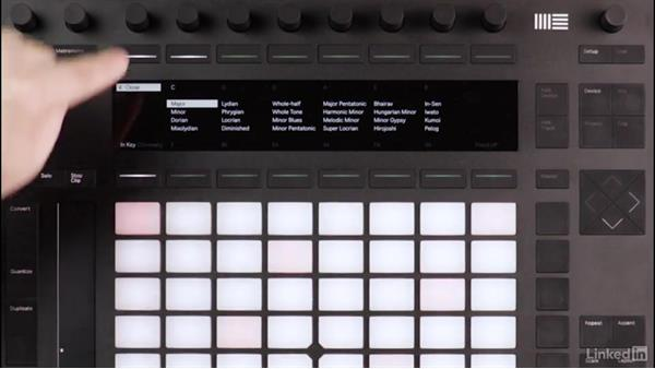 Chord shapes with Ableton Push: Producing Electronic Music in Ableton Live
