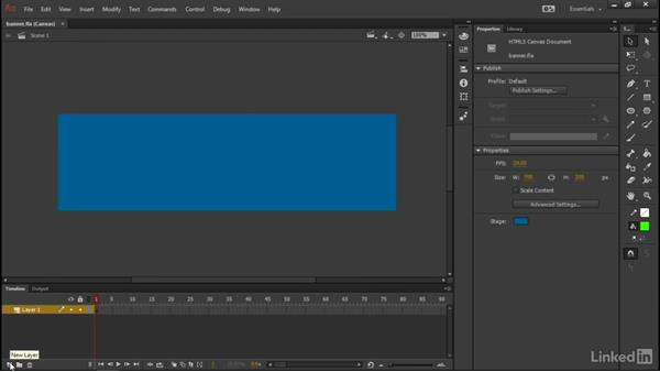 Preparing the stage: Learn Adobe Animate CC: Interactive Animation