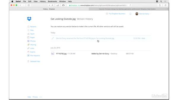 View the file history in the browser: Dropbox for Photographers