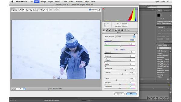 Why use Camera Raw with After Effects?: After Effects CS4 Beyond the Basics