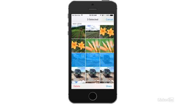 Select multiple images for moving or sharing: Dropbox for Photographers