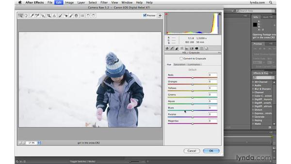 Adjusting color in Camera Raw: After Effects CS4 Beyond the Basics