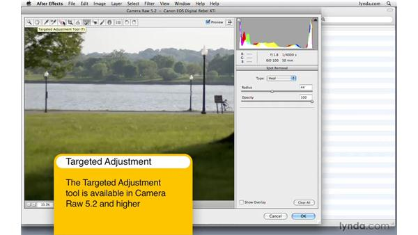 Editing images using Camera Raw: After Effects CS4 Beyond the Basics