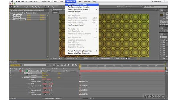 Creating animation presets: After Effects CS4 Beyond the Basics