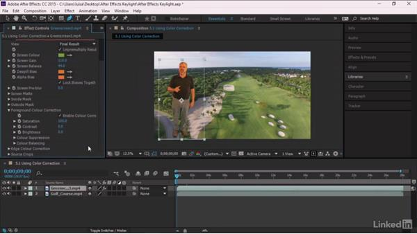 Using color correction: After Effects Guru: Keying with Keylight