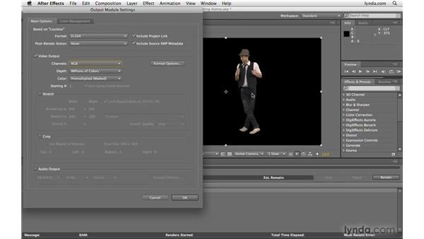 Outputting an alpha channel: After Effects CS4 Beyond the Basics