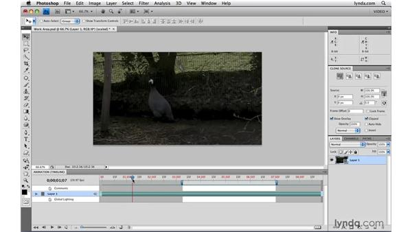 Using work areas: Photoshop CS4 Extended for Video