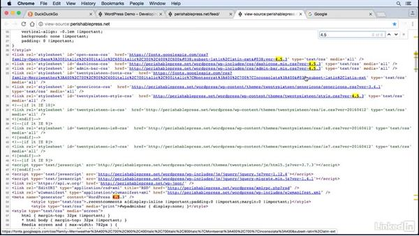 Remove version numbers: WordPress: Developing Secure Sites
