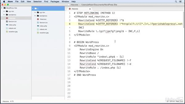 Stop file hotlinking: WordPress: Developing Secure Sites