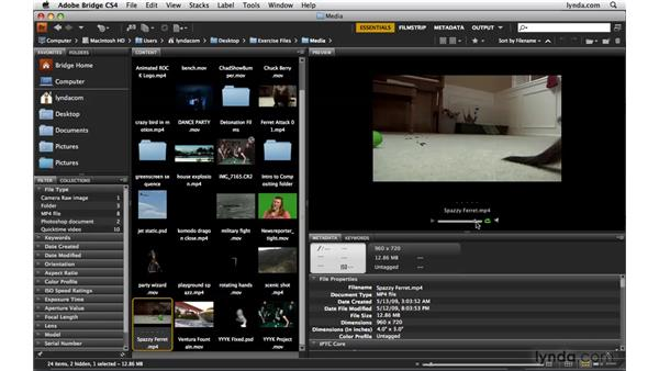 Previewing video with Adobe Bridge: Photoshop CS4 Extended for Video