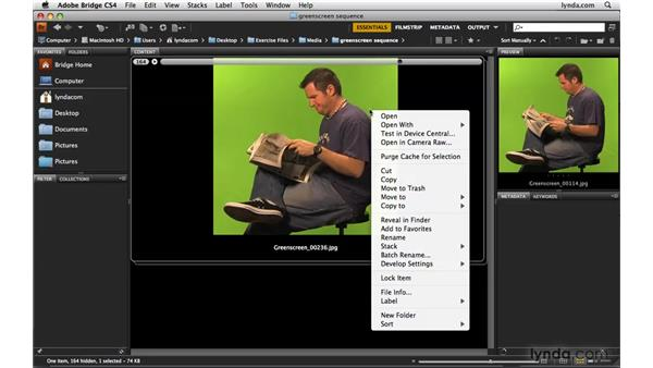 Previewing image sequences in Bridge: Photoshop CS4 Extended for Video