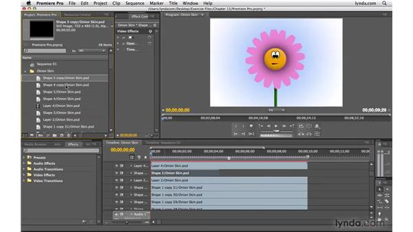 Working with Premiere Pro: Photoshop CS4 Extended for Video
