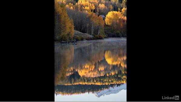How to use reflections in fall photography: Landscape Photography: Autumn