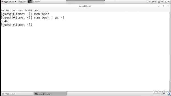 Exploring the Bash documentation