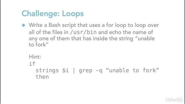 Challenges: Using local variables in functions, loops, and arithmetic: Linux: Bash Shell and Scripts