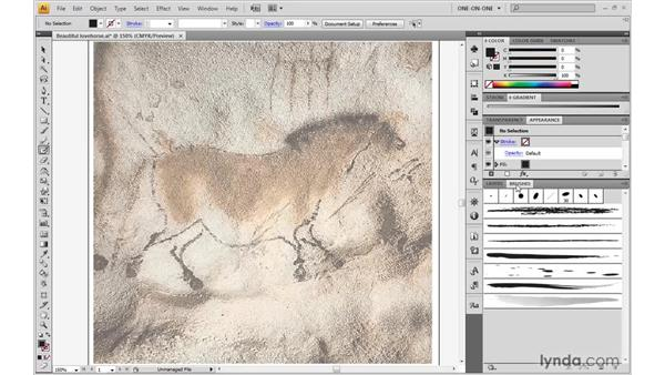 Painting with the new Blob brush: Illustrator CS4 One-on-One: Advanced