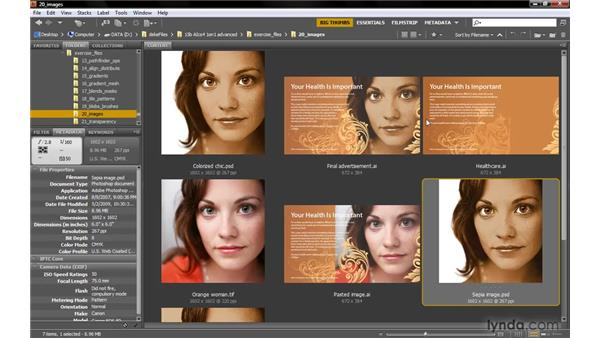 Linking is efficient, embedding is not: Illustrator CS4 One-on-One: Advanced