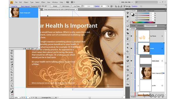 The importance of image resolution: Illustrator CS4 One-on-One: Advanced