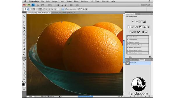 Welcome: Photoshop CS4: Selections in Depth