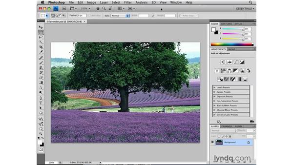 Deselecting and reselecting: Photoshop CS4: Selections in Depth