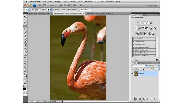 Using the Quick Selection tool: Photoshop CS4: Selections in Depth