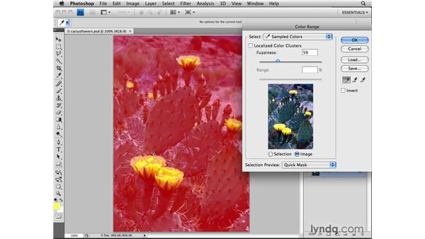 Working with the Color Range feature: Photoshop CS4: Selections in Depth