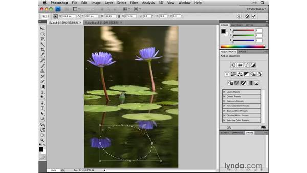 Transforming selections: Photoshop CS4: Selections in Depth