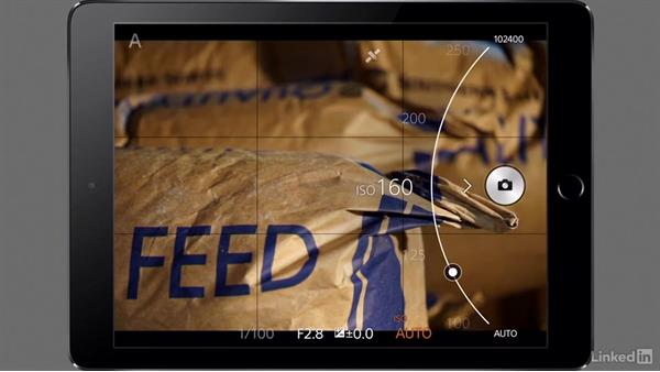 Adjusting the settings on your a7 Camera: Sony Alpha a7 Tips: Apps for Your Camera
