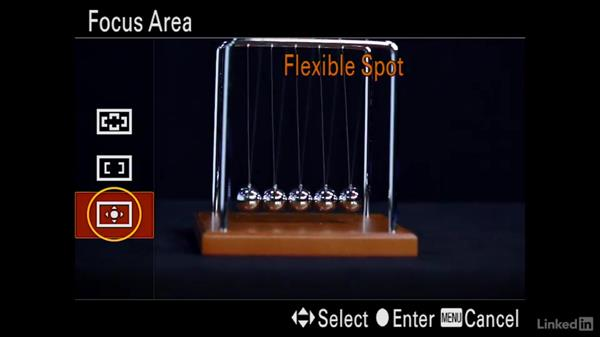 Setting up the camera for motion shot: Sony Alpha a7 Tips: Apps for Your Camera
