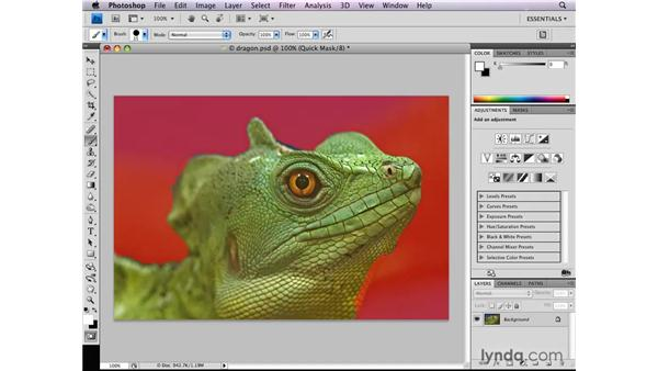 Cleaning up selections in Quick Mask : Photoshop CS4: Selections in Depth