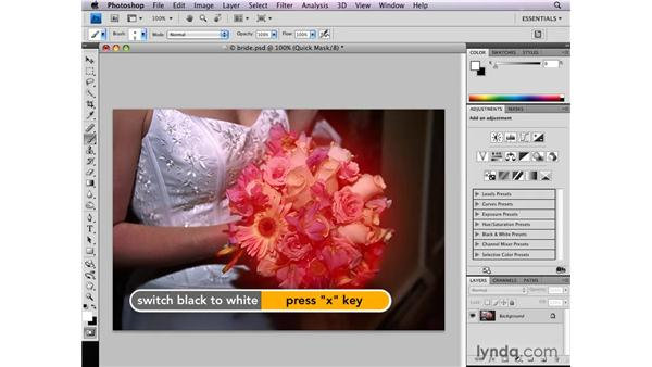 Creating selections from scratch in Quick Mask : Photoshop CS4: Selections in Depth