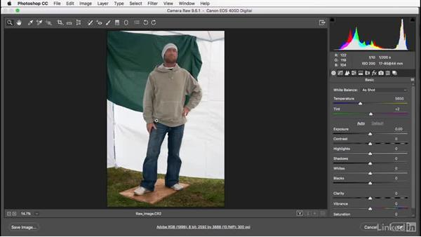 Placing the Camera Raw image: Photoshop: Smart Objects
