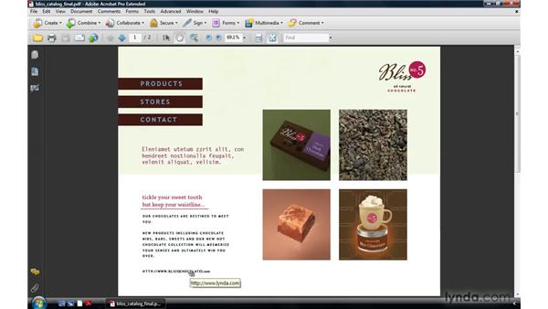 Using links: Acrobat 9 Pro: Creating Multimedia Projects
