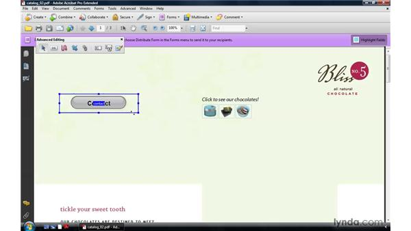Creating rollover buttons: Acrobat 9 Pro: Creating Multimedia Projects