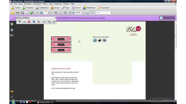 Duplicating buttons: Acrobat 9 Pro: Creating Multimedia Projects