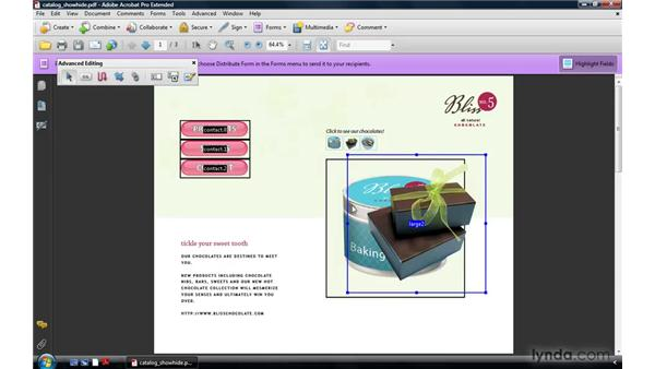 Using buttons to show and hide fields: Acrobat 9 Pro: Creating Multimedia Projects