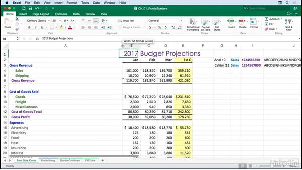 Adjusting fonts, font sizes, and font colors: Excel for Mac 2016: Advanced Formatting Techniques