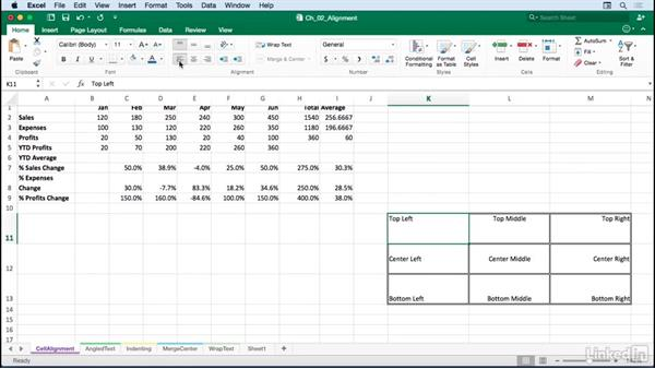 Adjusting horizontal and vertical cell alignment: Excel for Mac 2016: Advanced Formatting Techniques