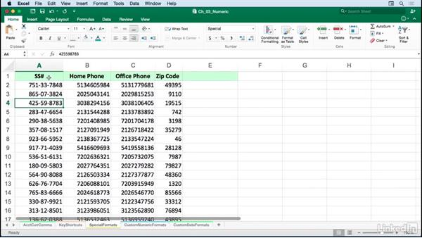 Setting special formats for dates, times, phone numbers, and zip codes: Excel for Mac 2016: Advanced Formatting Techniques
