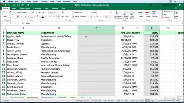 Working with rows, columns, and sheets: Excel for Mac 2016: Advanced Formatting Techniques