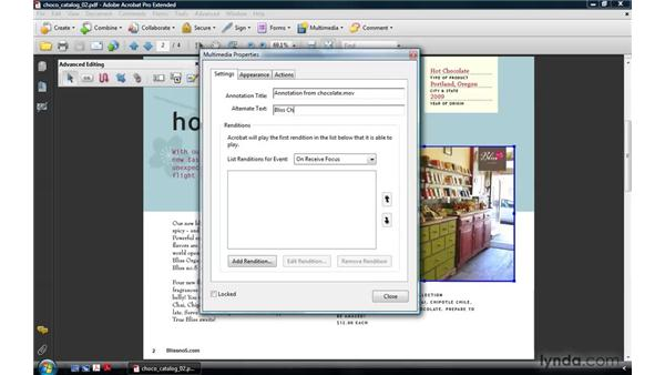 Setting the appearance (legacy media): Acrobat 9 Pro: Creating Multimedia Projects